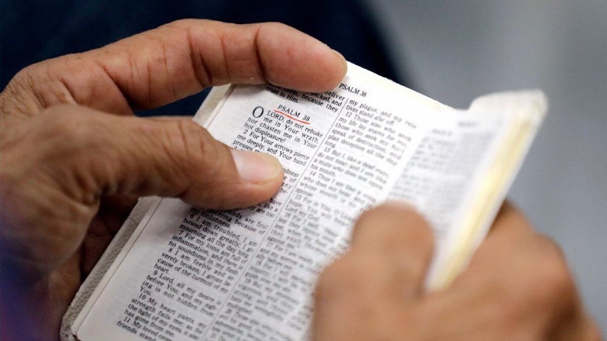 How to Read Your Bible: Law and Gospel